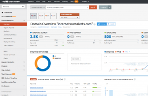 SEMrush results page for internetscamalerts.com