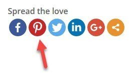 Typical social share buttons including Pinterest.
