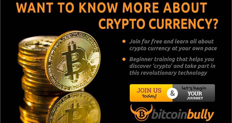 Bitcoin Bully cryptocurrency training for everyone